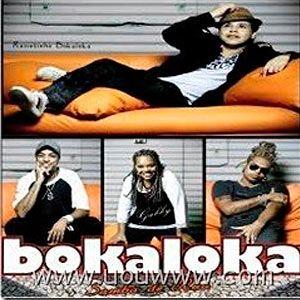 cd bokaloka samba de rua 2010